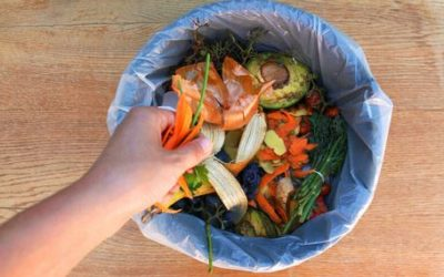 Limiter le gaspillage alimentaire